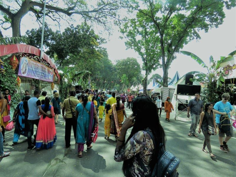 Thaipusam festival i Malaysia royaltyfri bild