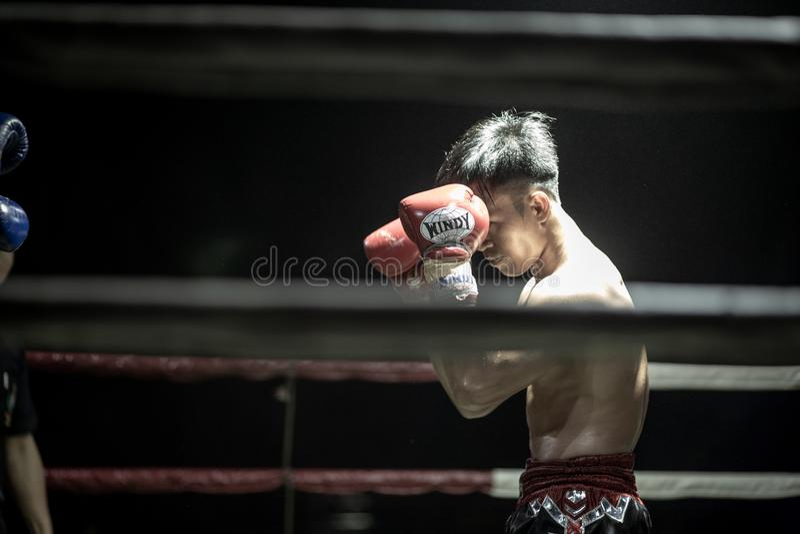 Thais Boksersfestival stock foto