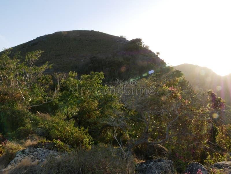 Thais-Hügel stockbilder