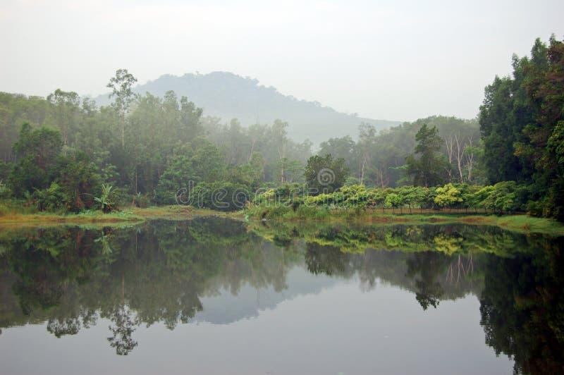 Thais meer stock foto's