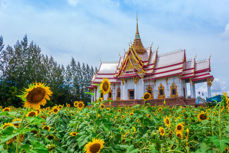 Thais tempeloriëntatiepunt in Nakhon Ratchasima, Thailand royalty-vrije stock afbeeldingen