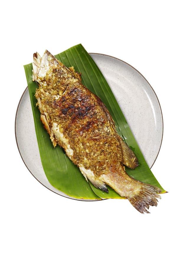 Thaise die vissen met kruid worden geroosterd royalty-vrije stock foto's