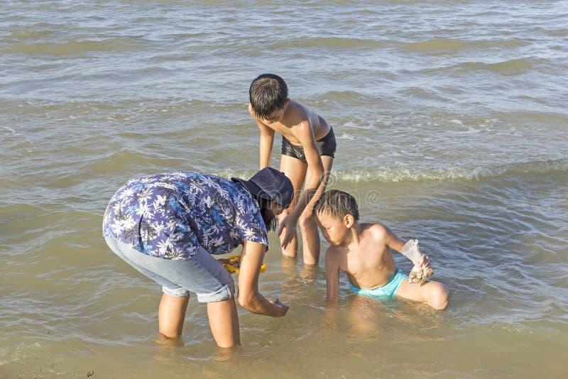 Thaise familie die shells zoeken stock afbeeldingen