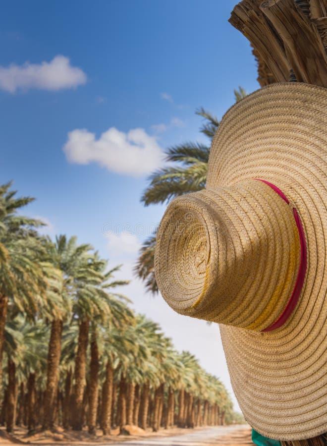 Thaise hoed royalty-vrije stock foto
