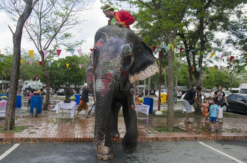 Thaise mensen en vreemdelingsreizigers die en water met olifanten spelen bespatten en mensen in Songkran-Festival in Ayutthaya royalty-vrije stock afbeeldingen