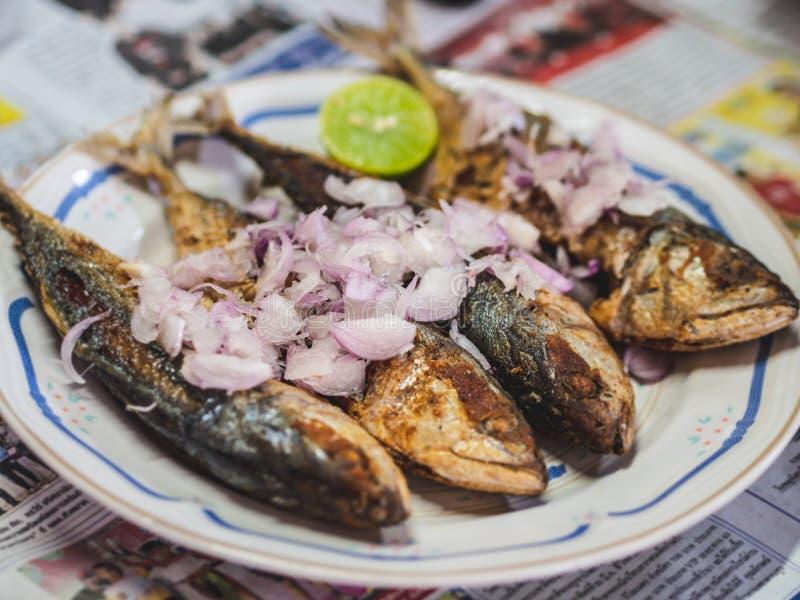 Thaise traditionele voedsel Kruidige gebraden Makrelen stock foto
