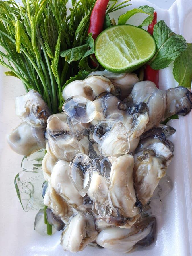 Thaise voedselstijl, Verse Oesters met groentenacacia, citroen die en Spaanse peper, als achtergrond wordt gesneden royalty-vrije stock foto