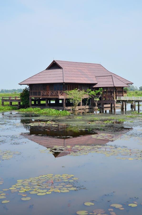 Thale Noi sjön och vattenfågeln parkerar på det Phatthalung landskapet Thailand arkivfoto