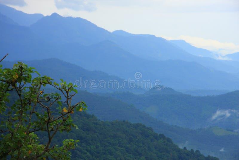 Thamarassery churam-Wayanad stock afbeeldingen