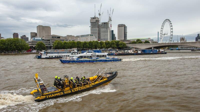 Thames flod, London royaltyfri bild