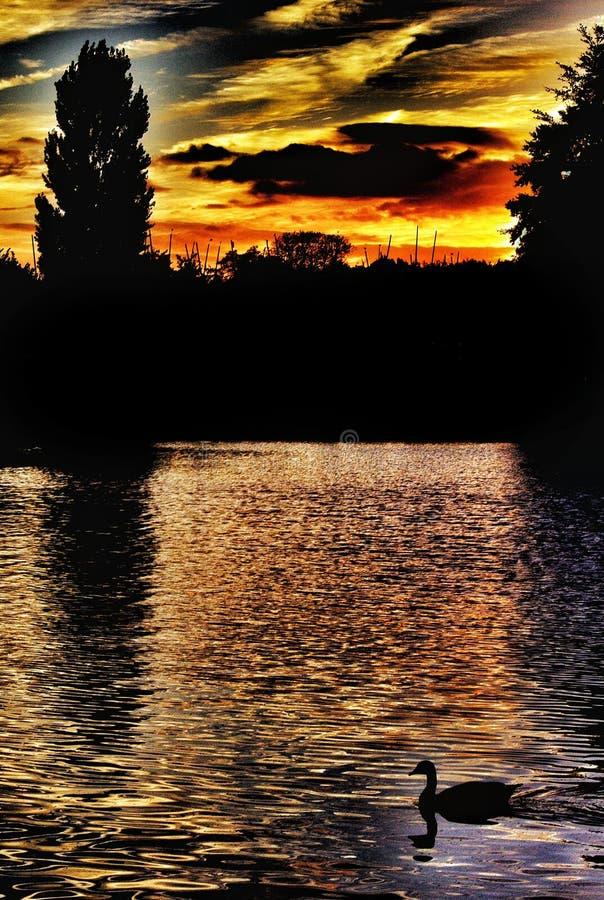 Thames spacery, evening nastroje zdjęcie stock