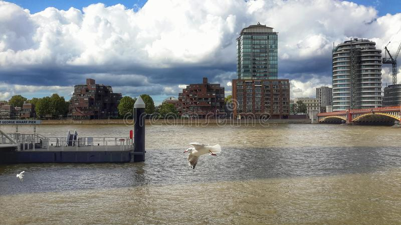 Thames View royalty free stock photography