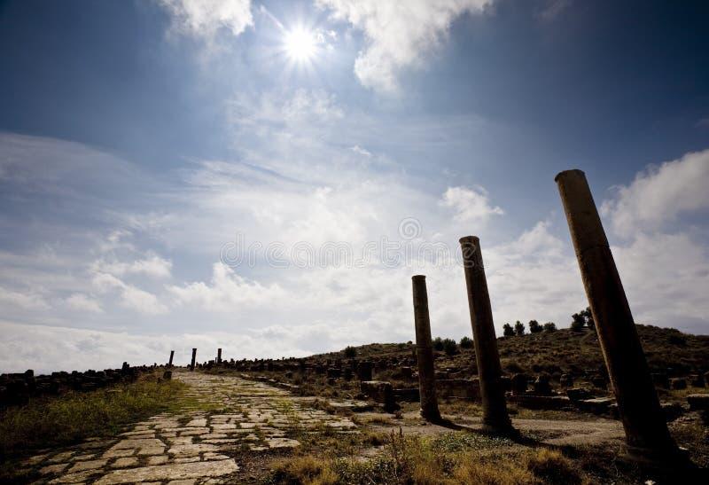 thamugadi стародедовской дороги римское стоковые фото