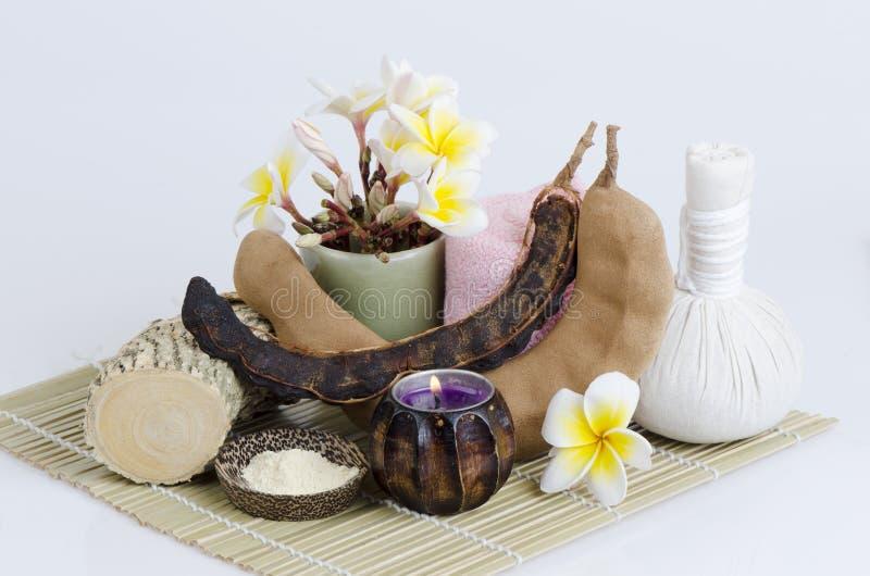 Thanakha粉末和罗望子树要的能对待粉刺在面孔 它控制Reduce被堵塞的毛孔 免版税库存图片