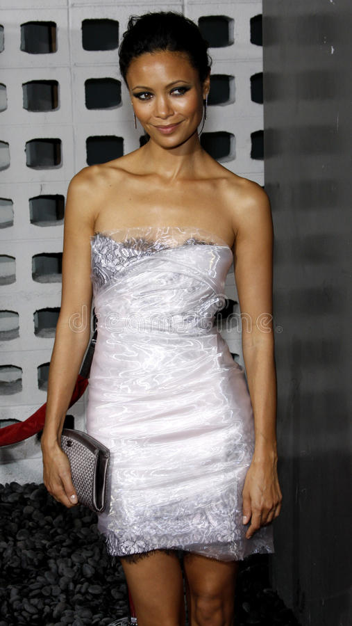 Thandie Newton. 06/10/2008 - Hollywood - Thandie Newton at the Los Angeles Premiere of `RocknRolla` held at the ArcLight Theater in Hollywood, California, United stock images