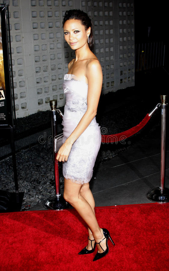 Thandie Newton. At the Los Angeles Premiere of `RockNRolla` held at the Arclight Theater in Los Angeles, California, United States on October 6, 2008 stock photo