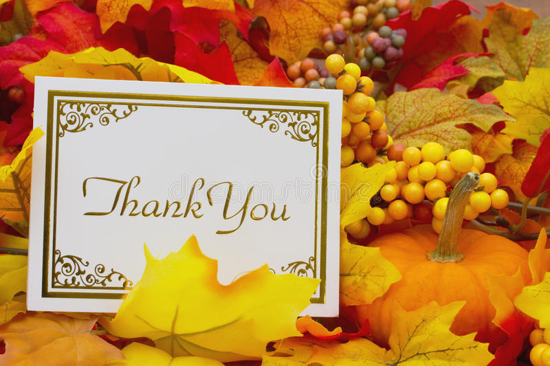 Download Thank You stock photo. Image of thanks, leaf, grateful - 60535704