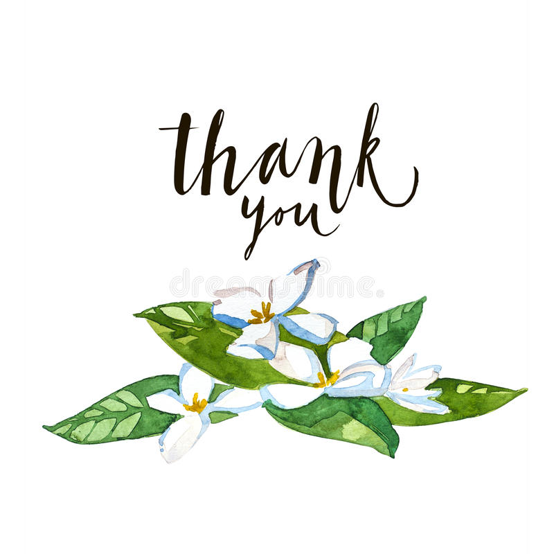 Thank you calligraphy brush painted letters whith flowers Thank you in calligraphy writing