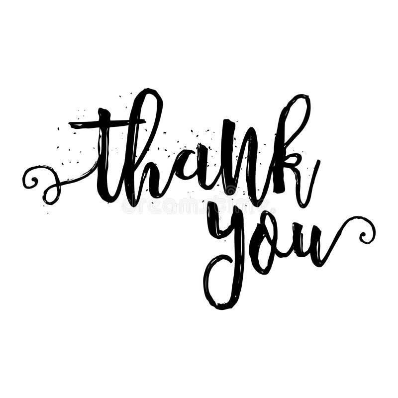Thank you calligraphy sign stock vector image 69003704 Thank you in calligraphy writing