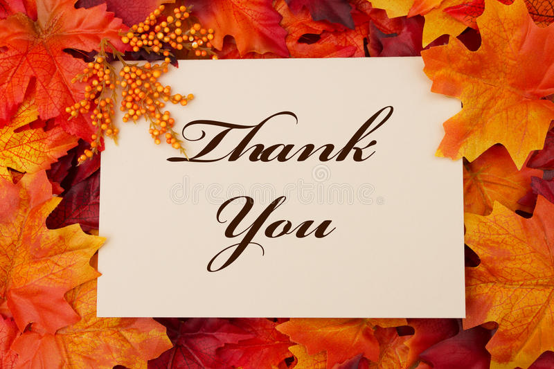 Download Thank You stock photo. Image of leaves, seasonal, message - 45381340