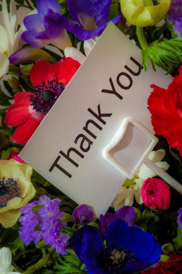 Thank You card in flowers stock image