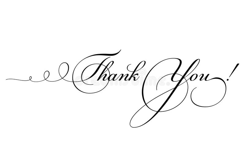 Thank You Card Vector Calligraphy With Swirl Stock