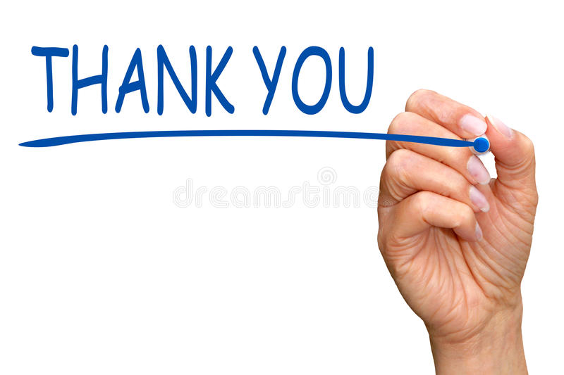 Thank you - female hand writing blue text royalty free stock photos