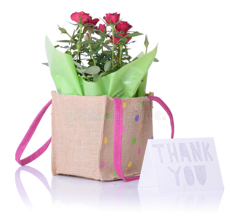 Thank you flowers stock images