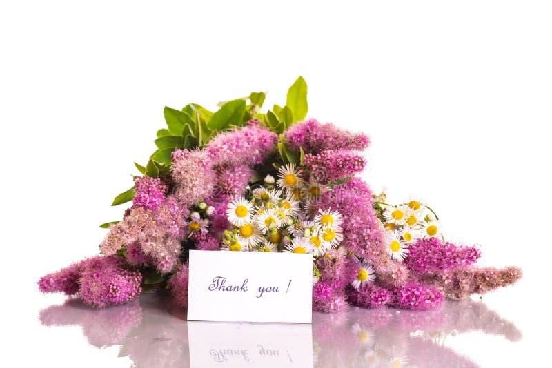 Thank you stock photo. Image of beautiful, daisy, blossom - 31730204