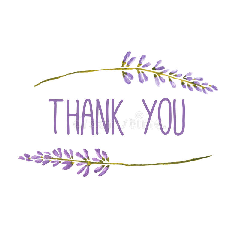 Thank you greeting card with flowers of lavender. Vector watercolor stock illustration