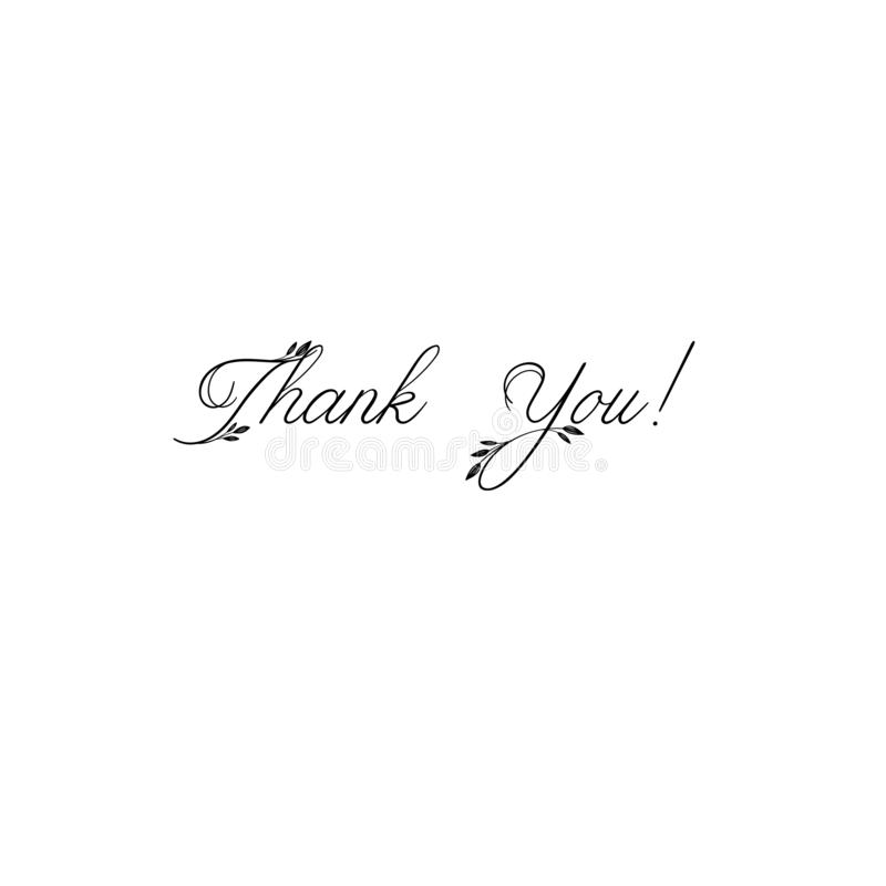 Thank You handwritten inscription. Hand drawn lettering. Thank You calligraphy. Thank you card. Vector illustration. vector illustration