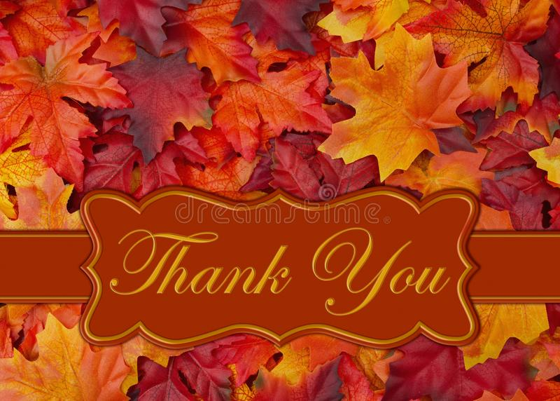 249 Thank You Card Fall Leaves Photos Free Royalty Free Stock Photos From Dreamstime