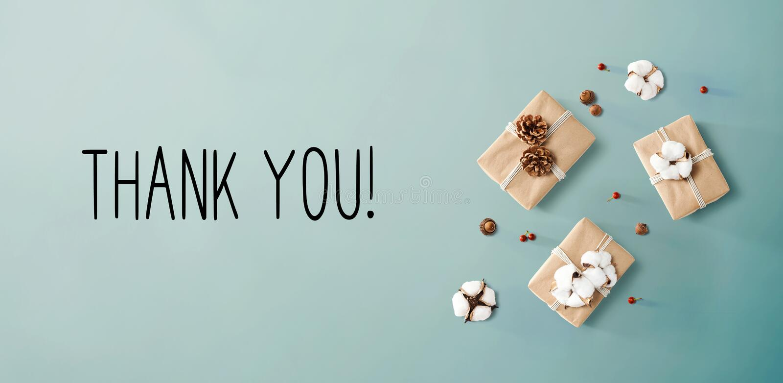 Thank you message with gift boxes with cottons stock image