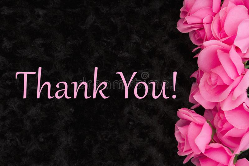 Thank You message with pink roses on black stock photos