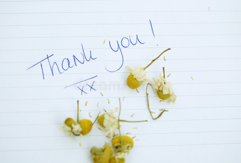 Download Thank You Note Royalty Free Stock Photography - Image: 6480537