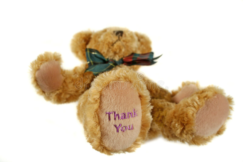 Thank You Teddy 3. Teddy bear lying down with thank you on his paw stock image