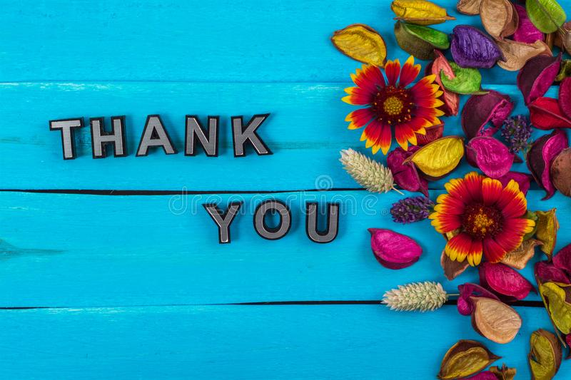 Thank you word on blue wood with flower stock photos
