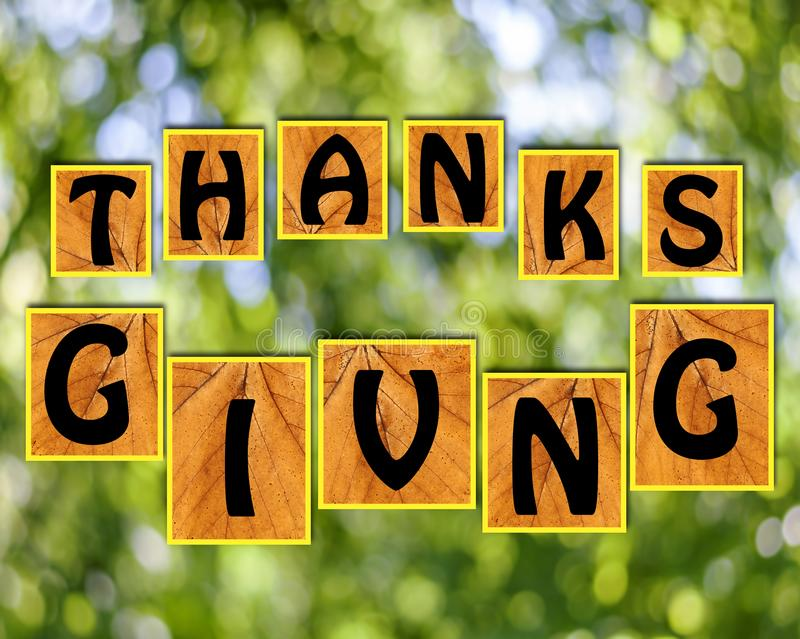 Thanks giving on blurr background. Close stock images