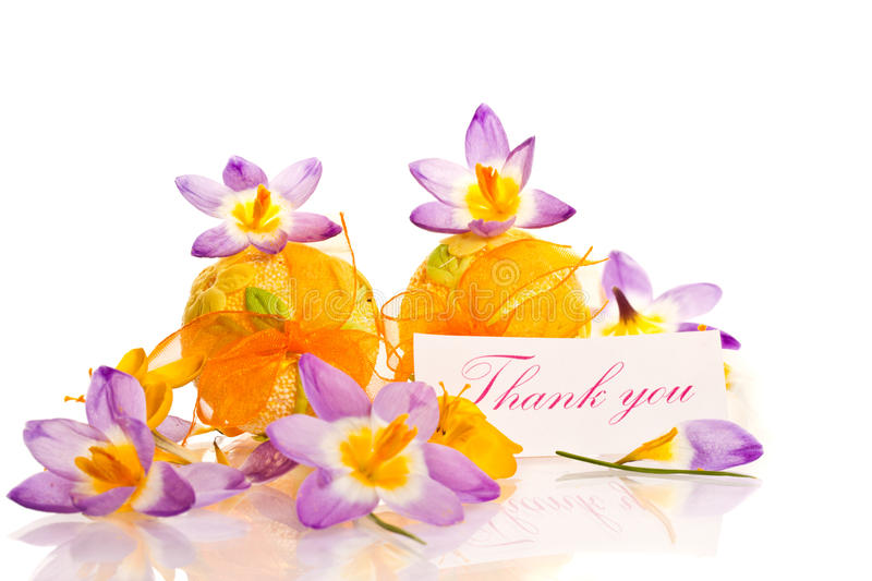 Thanks and spring crocuses stock photos