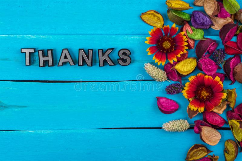 Thanks word on blue wood with flower. Thanks word on old blue color wood with flower and dried flower stock photography