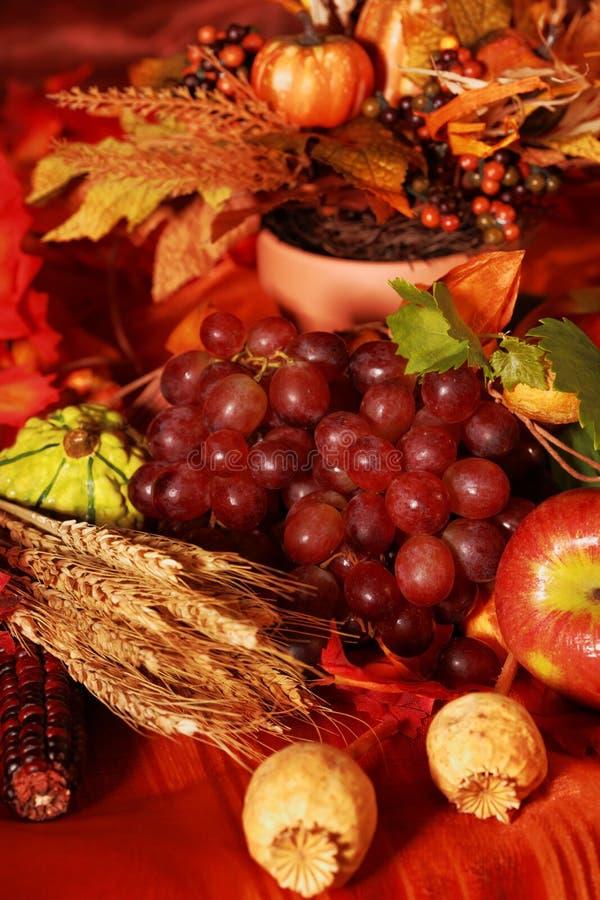 Free Thanksgiving Stock Image - 11077921