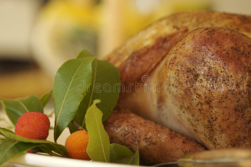 Download Thanksgiving stock photo. Image of tradition, feast, dinner - 1432234