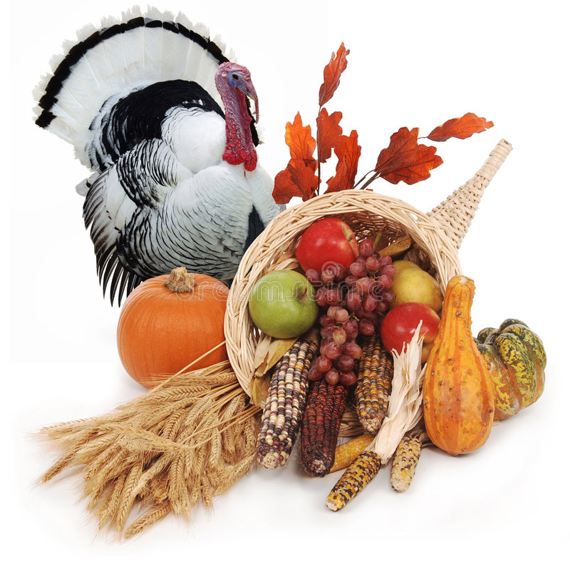 Thanksgiving. Horn of plenty with autumn harvest of leaves, wheat pumpkin, squash, corn, apples, pear and grapes