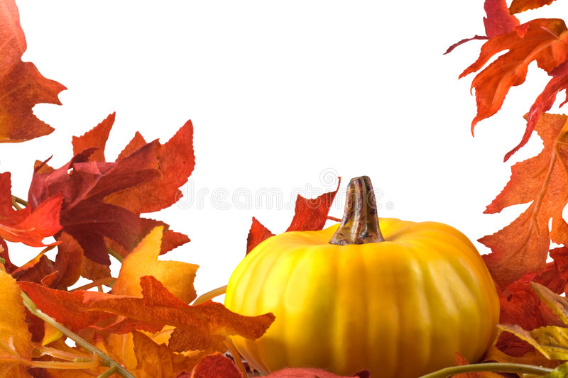 Thanksgiving. Decoration with pumpkin and fall leaves decor isolated on white with clipping path royalty free stock images