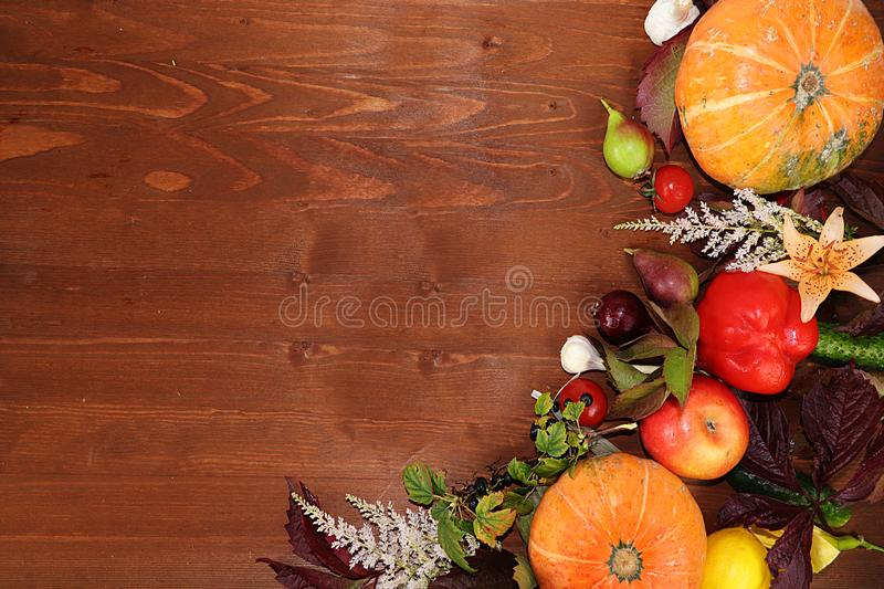 Thanksgiving, autumn background with seasonal autumn nature berries, pumpkins, apples and flowers on a wooden background, top view royalty free stock images