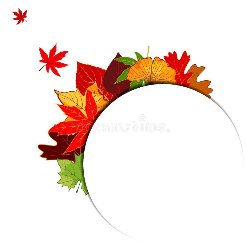 Thanksgiving Autumn Leaf Background coloré photographie stock libre de droits