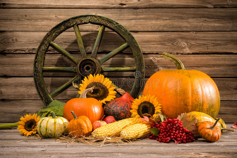 Download Thanksgiving stock photo. Image of harvest, holiday, grunge - 45272348