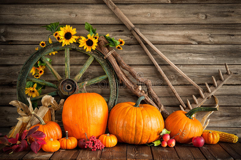 Thanksgiving autumnal still life with pumpkins stock photos