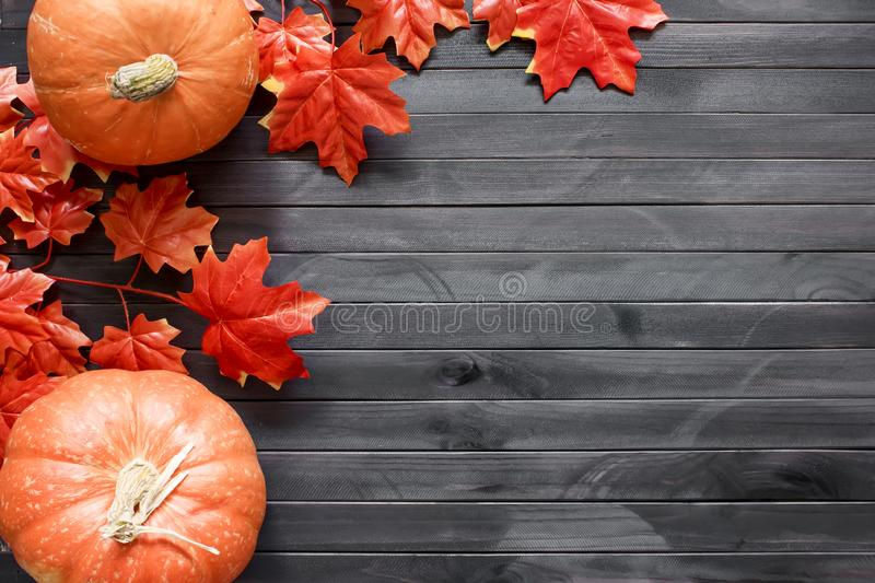 Thanksgiving background. Autumn background with pumpkin, candied oranges and copy space. Top view royalty free stock photo