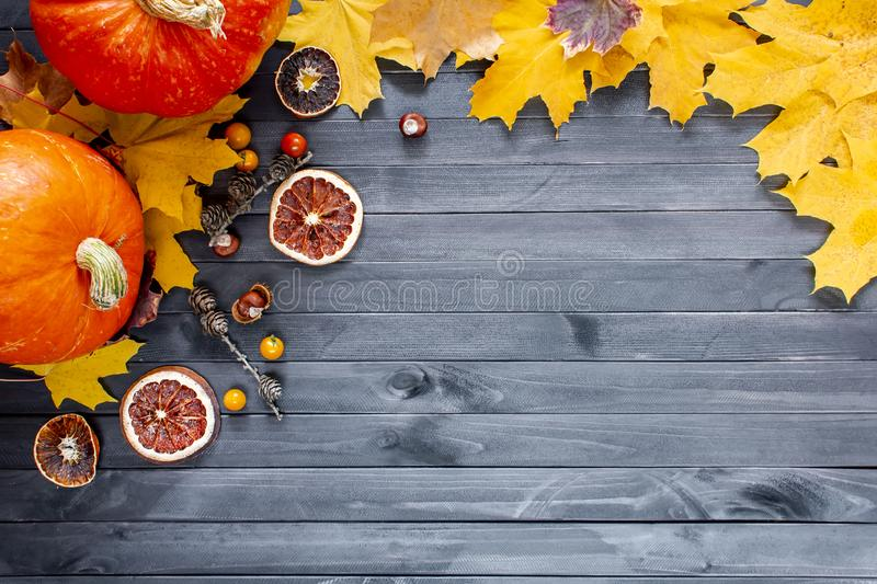Thanksgiving background. Autumn background with pumpkin, candied oranges and copy space. Top view stock image